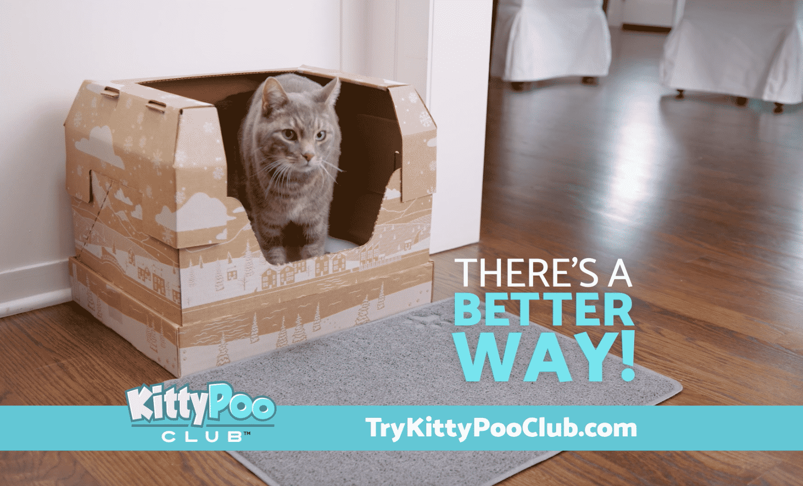 KittyPoo Club- :120